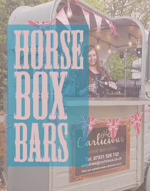 Carlicious Horsebox Bars